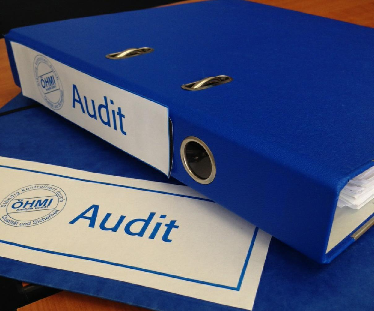 Audit klein